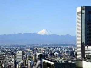 小田急ホテルセンチュリーサザンタワー 20階ロビーからの眺望